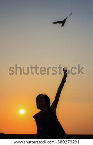 Silhouette Woman Hands Grab Seagull Flying Stock Photo (Edit Now