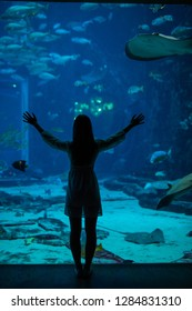 Silhouette of a woman with hands up in an oceanarium