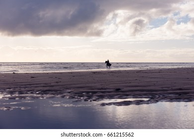 Silhouette of a woman horse riding free on a purple overcast beach at sunset