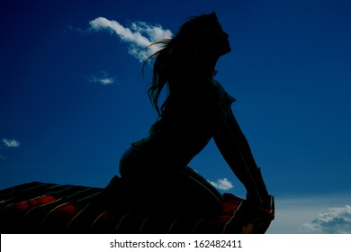 A silhouette of a woman looking up and riding a magic carpet.
