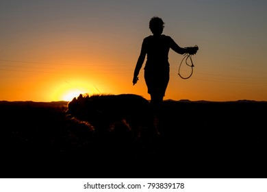 Silhouette of a woman taking a walk with her dog at sunset.