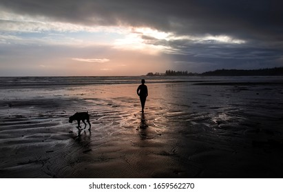 Silhouette of a woman walking her dog on a beach during sunset.