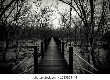 Silhouette of wood bridge with white rope fence in forest. Branches of trees in the cold forest with gray sky background in black and white tone. Despair and hopeless concept