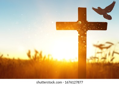 Silhouette of wooden christian cross at the field