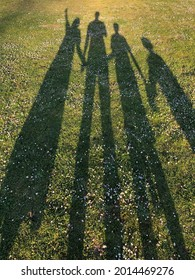 Silhouette of a young family holding hands on green grass in the park casted by a long shadow. Concept of happiness and celebrating family live as background