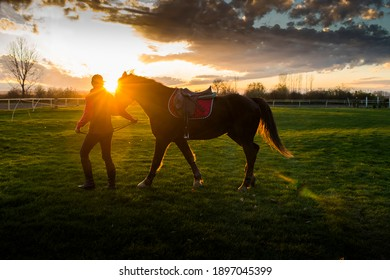 Silhouette of a young girl with horse at the sunset