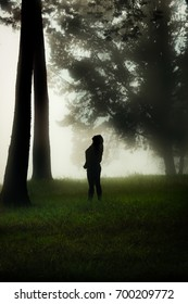 Silhouette of a young girl standing in a misty forest