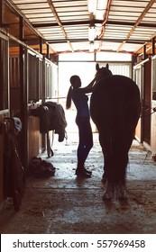 Silhouette von jungen Pferdefrauen Besitzer, die den Hengst in Stall nutzt. Vertikales Bild mit Vintage Filter.