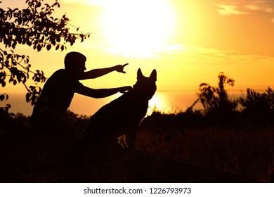 silhouette of young man and dog enjoying nature, boy showing German Shepherd at sunset in a field, concept og friendship man and animal