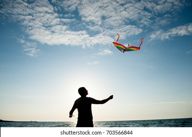 Silhouette of a young man holding a kite flying in beautiful blue sky with clouds at Californian sunset