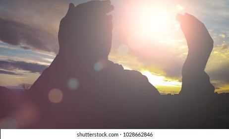 Silhouette of young muslim man praying outside during sunset with lens flare