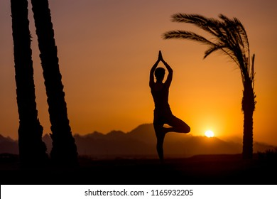 Silhouette of young woman doing fitness, yoga or pilates training, standing in asana Vrikshasana (Tree Pose) at sunset in picturesque location with mountains and palm trees