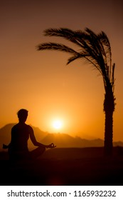 Silhouette of young woman practicing yoga in beautiful tropical location with mountains, sitting beside palm tree in sukhasana easy pose, meditating at sunset or sunrise