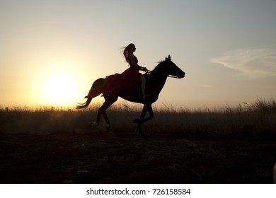 Silhouette young woman riding a horse in field at sunset. Stallion run gallop outdoors