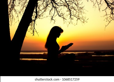 silhouette of a young woman studing the Bible in nature, girl reading a book near a tree at sunset, concept religion and spirituality
