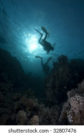 Silhouetted divers above a coral reef. Red Sea, Egypt.