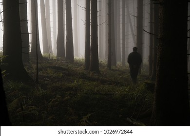 A silhouetted man walks through a dark forest with trees visible in silhouette