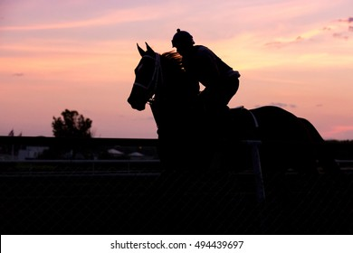 Silhouetted race horse and rider, exercising at dawn