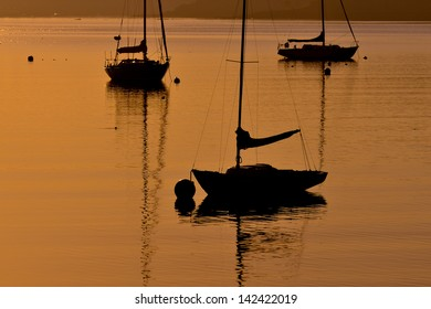 Silhouetted sail boats at sunrise on the New England Coast