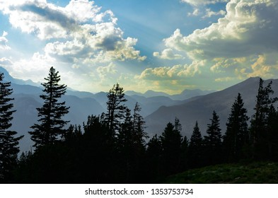 Silhouetted trees overlook the misty mountains of the John Muir Wilderness near Mammoth California in the High Sierras
