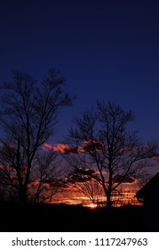 silhouetted trees at sunset with blue and orange sky
