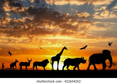 Silhouettes of animals on golden cloudy sunset background