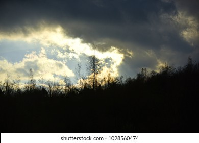 Silhouettes of black trees without leaves. Autumn landscape concept. Sun makes its way through menacing clouds in sky. Black clouds in autumn sky.