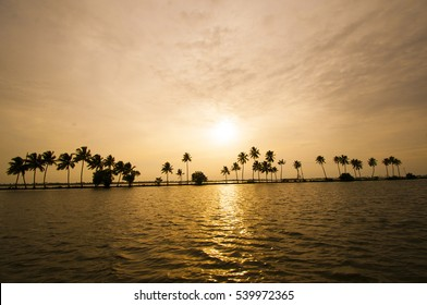 Silhouettes of coconut trees during the sunset in the backwater, Evening scene at the backwaters of Kerala, India