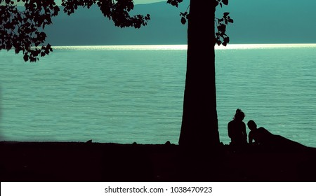 A silhouettes of a couple having a romantic moment under a tree on the shore of lake Ohrid, Macedonia.