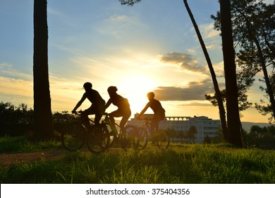 silhouettes of cyclists in a race through the woods at dawn