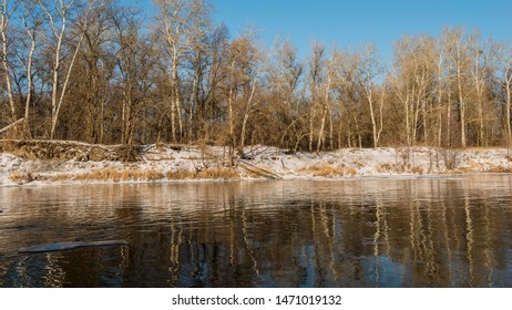Silhouettes of deciduous forest trees on the river bank in sunny weather. Winter season. Web banner. Panoramic landscape.