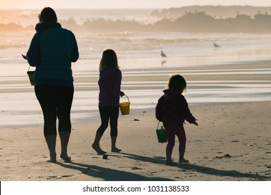 Silhouettes of a family playing on the beach.