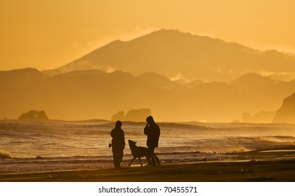 silhouettes of the men, woman and dog walking on oceanside