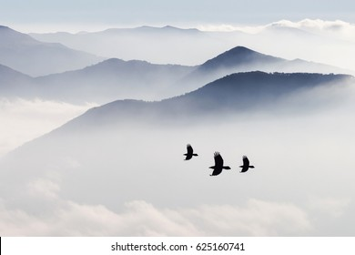 Silhouettes of mountains in the mist and three bird flying