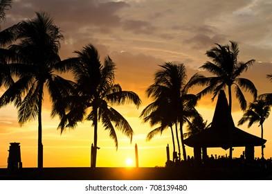 Silhouettes of palm tree during sunset in Kota Kinabalu, Sabah Borneo, Malaysia.