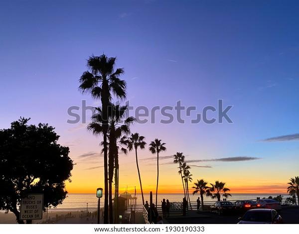 silhouettes-palms-blue-orange-sunset-600
