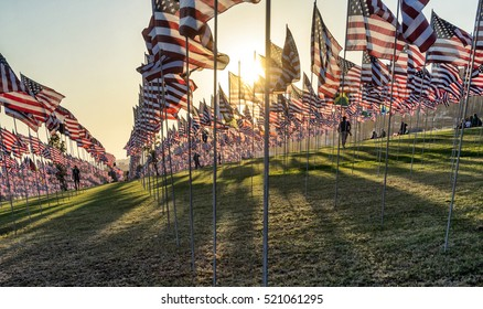 Silhouettes of people among many American US flags flying at sunset on green field