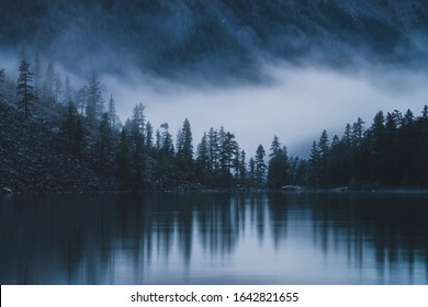 Silhouettes of pointy fir tops on hillside along mountain lake in dense fog. Reflection of coniferous trees in shiny calm water. Alpine tranquil landscape at early morning. Ghostly atmospheric scenery