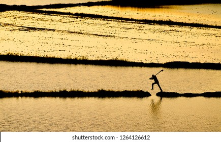 silhouettes of rice field and farmer jumping on road at golden sunset. Rice fields on terraced. Fields are prepared for planting rice. flooded fields like a still lake on floating season.