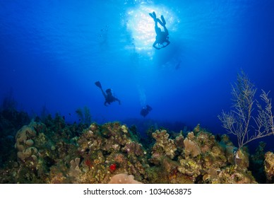 silhouettes of scuba divers dropping off a boat in the deep blue warm water of the Caribbean Sea. The adventurers are about to explore the tropical reef system below that has hard and soft coral