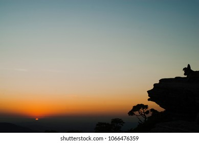 Silhouettes at sunrise in Brazil