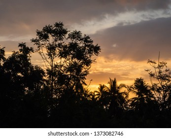 Silhouettes of trees against the blue sky and multi-colored clouds. Koh Phangan. Thailand.