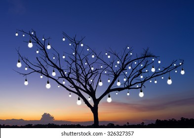 Silhouettes of trees with Many bulb light, Concept of wisdom tree.