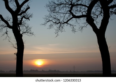 silhouettes of trunks and branches of lwo leafless oak trees in front of a mystic misty sunset over the moorlands