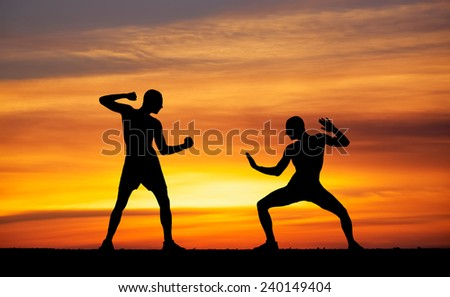 Silhouettes of two fighters