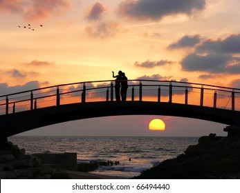 Silhouettes of two people standing on the bridge and looking at flying cranes on the sunset background