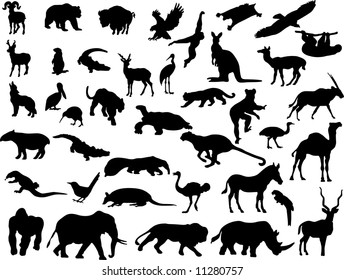 silhouettes wild animals Illustrations