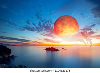 "Silhoutte of beautiful dolphin jumping up from the sea at sunset with lunar eclipse ""Elements of this image furnished by NASA """