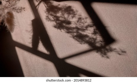 silhoutte of dried flowers on fabric