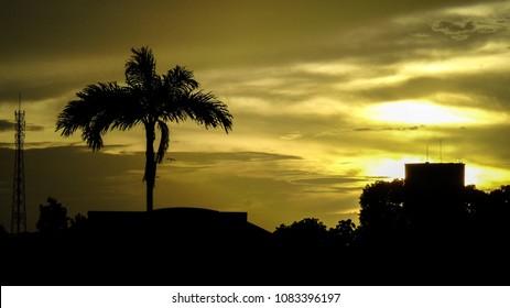 Silhueta causada pelo lindo pôr do sol na cidade de Capanema - Pará